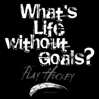 What's Life Without Hockey Goals?